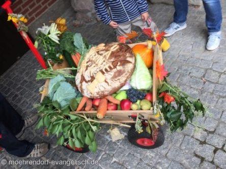 Erntedankfest für KLEIN und groß auf dem Bauernhof